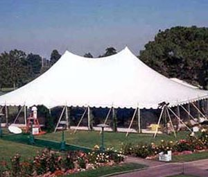 40x60 wedding pole tent