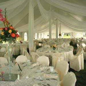 Wedding Party White Tent Rental